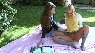 Perfect picnic turns sexy
